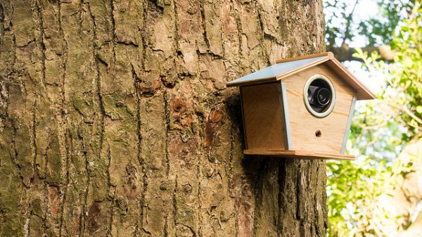 Your Ip Security Camera May Not Work Out After Find Out